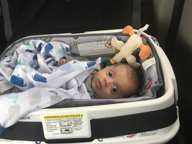 car bed for medically fragile infant